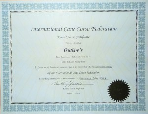 cane corso ICCF KENNEL REGISTRATION CERTIFICATE